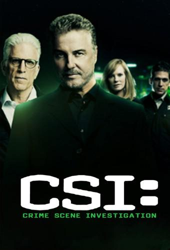 CSI: Crime Scene Investigation (season 14)